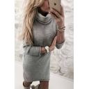 Warm Long Sleeve High Neck Plain Mini Sheath Mini Knit Dress