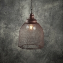 Vintage Caged Ceiling Pendant Light Iron 1 Light Hanging Lamp for Foyer Living Room