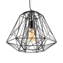Reel Iorn Medium Cage LED Pendant Light with One Light