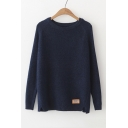 Simple Long Sleeve Round Neck Plain Fitted Leisure Sweater