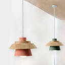 Colorful Natural Cone Drop Light Woody Single Light Decorative Hanging Lamp for Hallway
