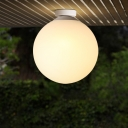 1 Bulb Globe Flush Mount Lighting Minimalist Frosted Glass Ceiling Light in White for Foyer