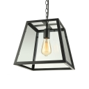 Industrial Pendant Light with 11.81''W Clear Glass Shade in Black Finish