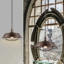 Industrial Style Mottled Rust Iron 1-Light Pendant Fixture with Metal Wire Cage