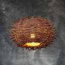 Modernism Nest Design Indoor Lighting Fixture Rattan 1 Bulb Decorative Pendant Lamp in Brown