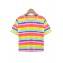 Rainbow Striped Printed Round Neck Short Sleeve Cropped Pink T-Shirt