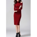 Women's New Stylish Turtle Neck Cold Shoulder Long Sleeve Simple Plain Knit Midi Sheath Dress