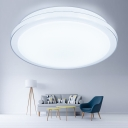 Simplicity Round Ceiling Flush Mount Acrylic LED Flush Light Fixture in Warm/White for Office
