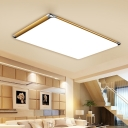 Ultra Thin Ceiling Flush Mount Minimalist LED Flush Light with Rectangle Acrylic Lampshade in Gold