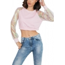 Stylish Sheer Mesh-Panelled Long Sleeve Round Neck Cropped Pullover Sweatshirt