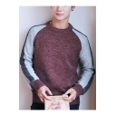 Fashionable Guys Color Block Crewneck Long Sleeve Pullover Sweater