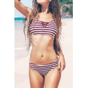 New Fashion Striped Printed Crisscross Front Burgundy Bikini Swimwear