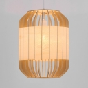 Drum Indoor Pendant Lighting with 47