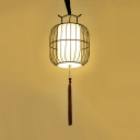 Rattan Lantern Hanging Light with Tassel and Adjustable Hanging Cord Asian Pendant Light