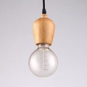 Antique Globe Ceiling Light Single Light Brown Lighting Fixture with 47