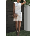 New Stylish Plain Ruffle Sleeve Crew Neck Zip Back Mini Lace Pencil Dress