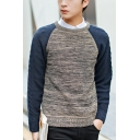 Mens Basic Round Neck Long Sleeve Color Block Fitted Pullover Sweater