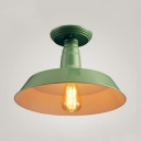 Barn Flush Light 1 Light Metal Industrial Ceiling Light in Green, 9.5