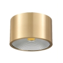 Modern Drum Shape LED Spot Light Dining Room Kitchen Single Head Gold Flush Mount Light in Warm White