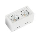 Black/White Rectangle Shape Down Light High Brightness 2 Heads LED Ceiling Light for Kitchen Dining Room