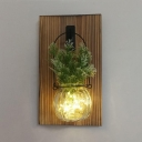 Green/White Plant Decoration Hanging Light Beautiful Wood and Clear Glass Fairy Light for Kitchen
