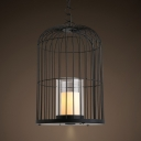 Metal and Glass Birdcage Pendant Lighting Single Light Rustic Style Chandelier in Black for Kitchen