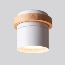 White/Green/Gray LED Spot Light Angle Adjustable Cylinder Flush Mount Light in Warm/Warm White for Kitchen