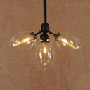 Industrial Oval Hanging Ceiling Light 4 Lights/5 Lights Clear Glass Chandelier Lighting in Black
