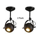 (2 Pack)Globe Shade LED Spot Light Angle Adjustable High Brightness Ceiling Fixture in Black/White/Antique Bronze for Shop