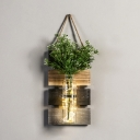 Rustic Style Fairy Light with Bottle and Dark Green/Light Green/Yellow Plant Clear Glass and Wood Twinkle Light
