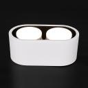 Oval Shape LED Down Light 2 Heads High Brightness Flush Mount Light in White/Warm for Kitchen Hotel