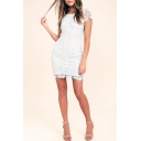 Women's Fashionable Plain Printed Short Sleeve Lace Patchwork Backless Bodycon Mini Dress