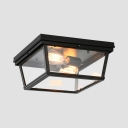 Dining Room Balcony Rectangle Flush Ceiling Light Clear Glass Metal 2 Lights Antique Style Black Overhead Lighting
