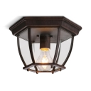 Glass Caged Flush Light Fixture Single Light Waterproof Vintage Style Flush Ceiling Light for Indoor Outdoor