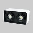 2 Heads Rectangle LED Down Light High Aluminum Brightness Flush Mount Light in White/Warm for Kitchen Bedroom