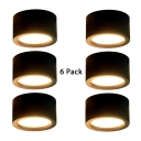 (6 Pack)5/6 Inch Black LED Down Light Hallway Living Room High Brightness Round Light Fixture in White/Warm White