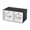 2 Heads High Brightness LED Flush Mount Light Black/White Rectangle Spot Light for Kitchen Foyer