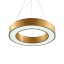 Gold Ring LED Suspension Light 16/19.5/23.5 Inch Hanging Light with Warm/White/Yellow Lighting for Office