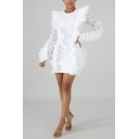 Women New Fashion Round Neck Long Sleeve Chic Ruffled Hem Mini Fitted Lace Dress