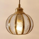 Melon Shape Bedroom Bathroom Pendant Light Clear Glass 1 Light Classic Hanging Light in Gold
