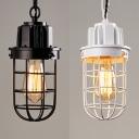 Vintage Bulb Wire Frame Pendant Light 1 Light Metal Hanging Light in Black/White for Cafe