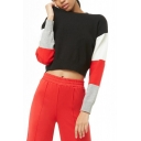 New Fashion Women's Colorblock Long Sleeve Round Neck Black Cropped T-Shirt