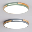 Acrylic Slim Panel Flush Mount Light Adult Kid Bedroom Contemporary Ceiling Light in Green/Gray
