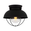 Domed Living Room Ceiling Mount Light Metal 1 Light Vintage Style Flush Light in Black Finish
