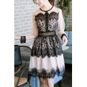 Girls Summer New Chic Lace Panel Long Sleeve Round Neck Mini A-Line Dress