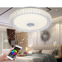Modern 7-Color Flush Light Round Crystal Bluetooth Control Music LED Ceiling Lamp for Dining Room