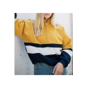Zip Front Stand Collar Long Sleeve Colorblock Striped Sweatshirt