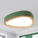 Teardrop Shape LED Flush Mount Light Macaron Acrylic Gray/Green/White Ceiling Lamp in Warm White/White