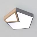Contemporary Gray/Green/White Ceiling Light Pentagon Acrylic LED Flush Light in Warm/White for Hallway