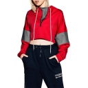 Girls Simple Plain Sheer Mesh Panel Zipper Stand Collar Long Sleeve Cropped Red Sweatshirt